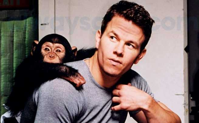 Mark-Wahlberg-destacada