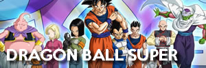 DRAGON BALL SUPER BANNER