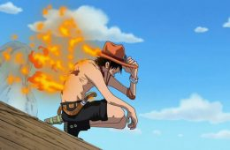 one piece spin off ace
