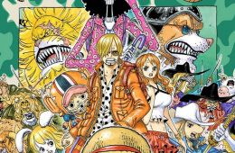 one piece zou