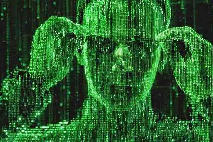 reboot de matrix