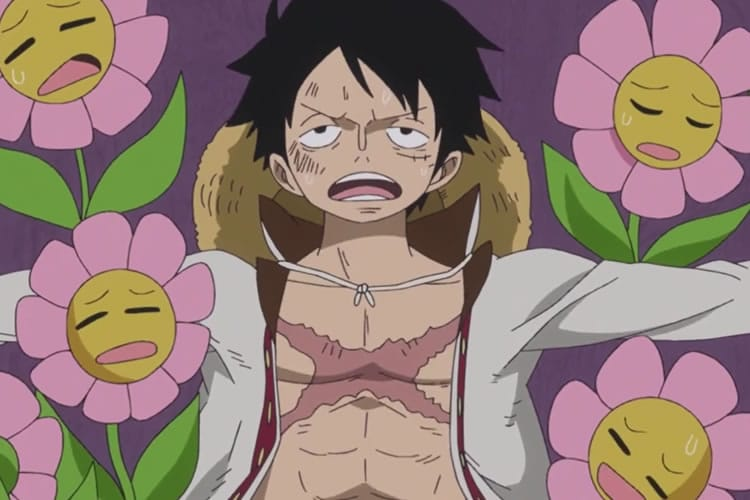 One piece 802 Luffy