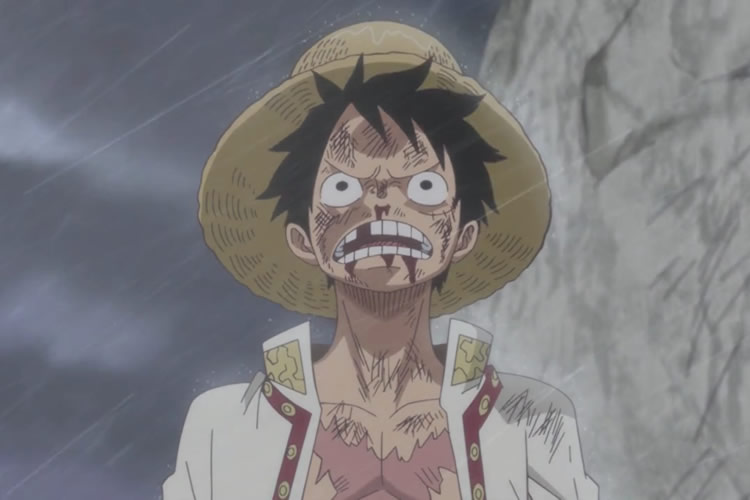 one piece 809 luffy