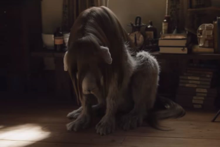 trailer final del live action de full metal alchemist