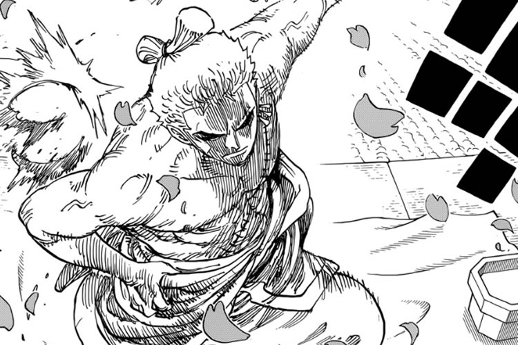 one piece 909 zoro