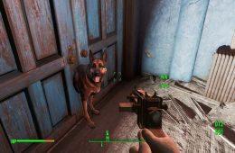 No hay perros en Fallout 76