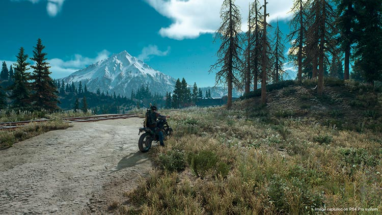 Days Gone tendrá DLC