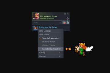 jugar online al multijugador local de juegos de Steam