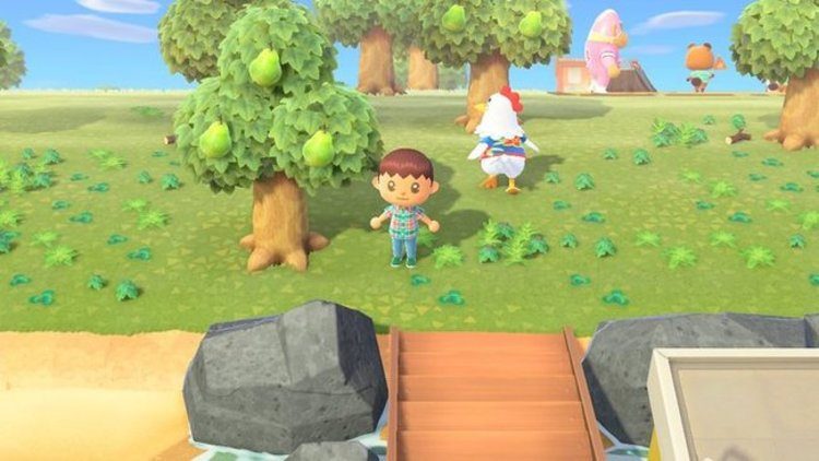 Multijugador con el mismo programa Animal Crossing en Nintendo Switch02